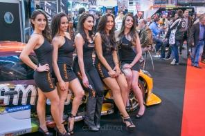 Ginetta Models: Autosport International 2016